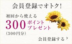 会員登録でオトク! 初回から使える300ポイントプレゼント