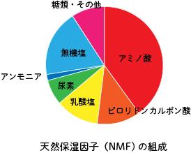 天然保湿因子(NMF)の組成
